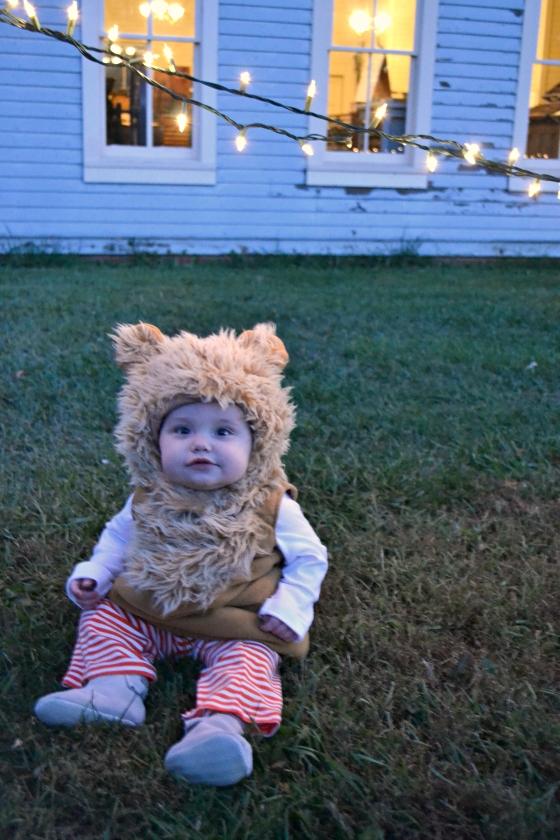 Lion Halloween Gemma